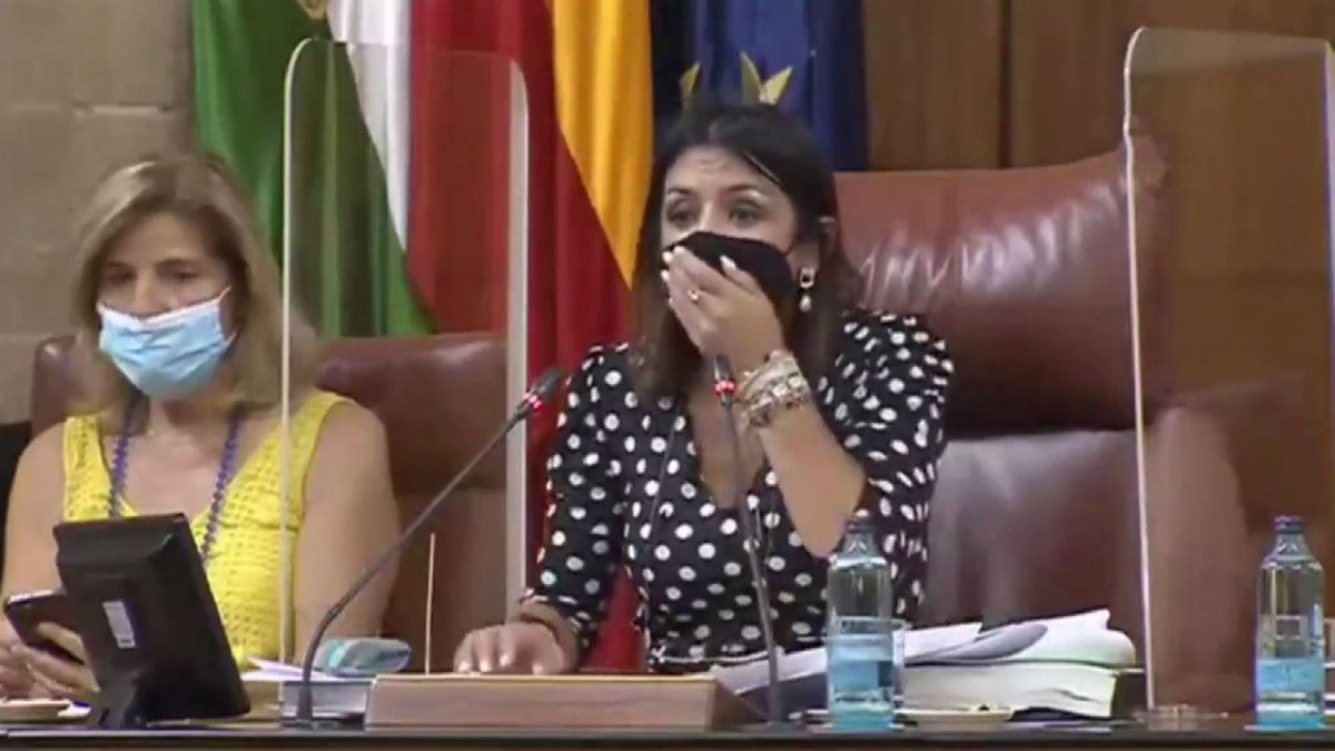 Endülüs Parlamentosu'na fare girdi, toplantı yarıda kesildi