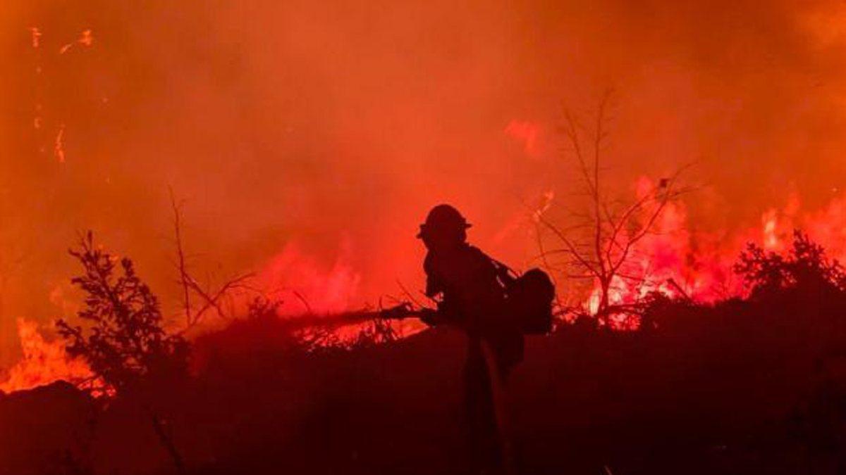 Kaliforniya'da orman yangınıyla mücadele